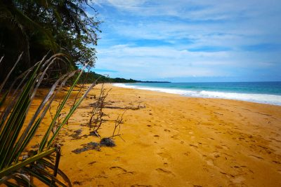 bluff-beach-isla-colon-bocas-del-toro